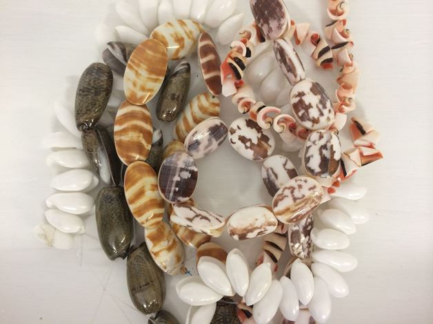 Picture for category Shell Beads